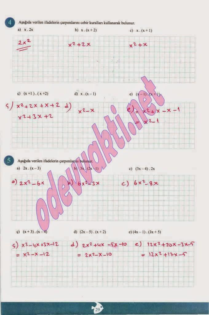 Ada Yayınları 7 Sınıf Matematik çalışma Kitabı Cevapları Gribilge