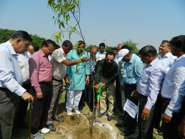 Green Noida - A Tree Plantation Drive to Increase the Green Cover in the City