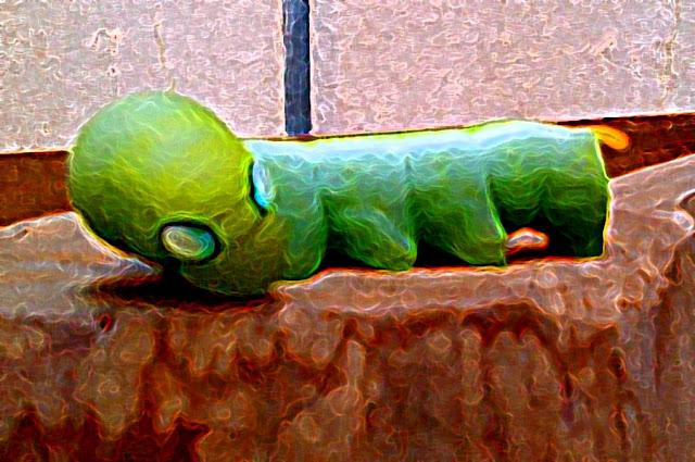 painting of long green fat caterpillar