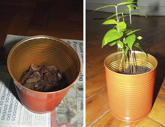 vaso de planta, vaso, reciclagem, faça você mesmo, diy, lata