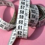 Informasi Seputar Diet Secara Alami