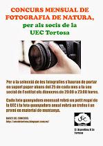 Concurs Mensual de Fotografia de Natura