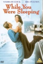 Watch While You Were Sleeping 1995 Megavideo Movie Online