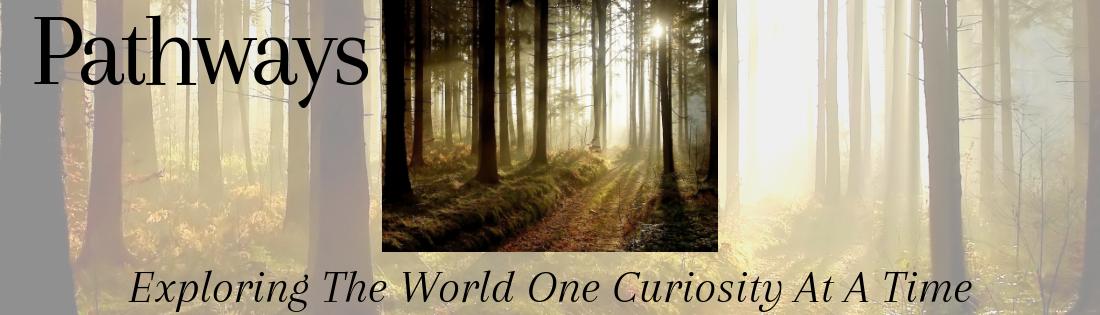 Author Kristy McCaffrey's Blog ~ Pathways