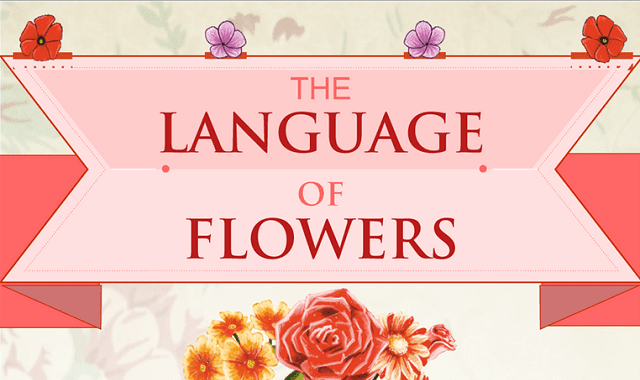 Image: The Language of Flowers