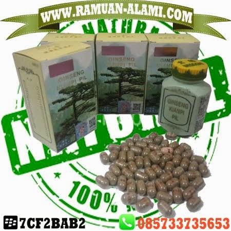 WWW.RAMUAN-ALAMI.COM