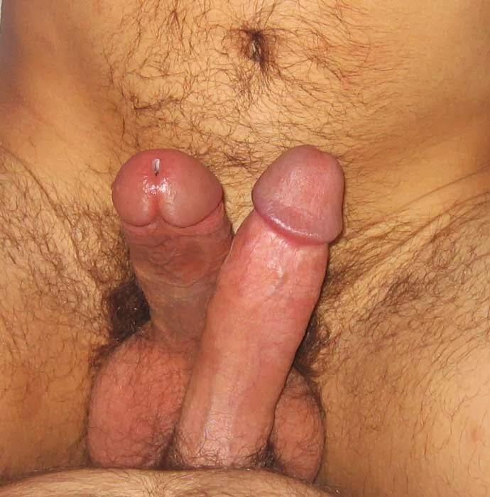gay porn daddy twink