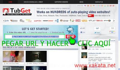 descargar vídeos de youtube online - paso 1