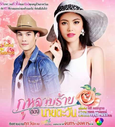 Bông hồng tình yêu xanh - Thái Lan