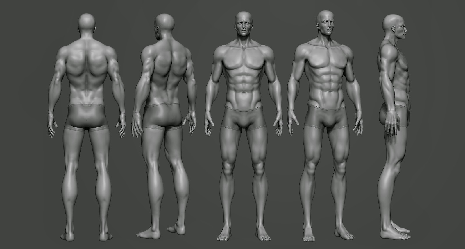 Marte\'s Page: Update and Anatomy study