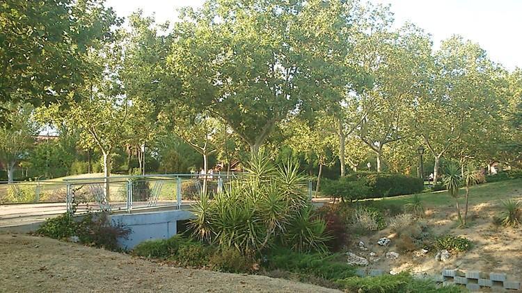 proyecto parque las comunidades alcorcon madrid paseo