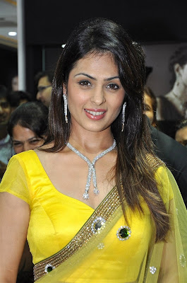 anjana sukhani Hot in yellow saree