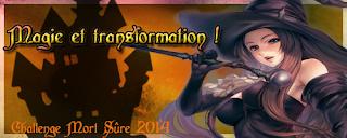 http://lesetageresdezebuline.blogspot.fr/2014/01/challenge-magie-et-transformation-2014.html