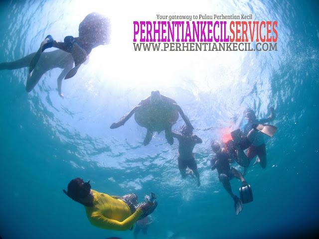 pakej Pulau Perhentian 2014, promosi pakej percutian Perhentian, pakej 3 hari 2 malam Perhentian, pakej snorkeling di Pulau Perhentian, pakej bajet pulau, pakej murah pulau, pakej pulau,  Pulau Perhentian Kecil, Terengganu