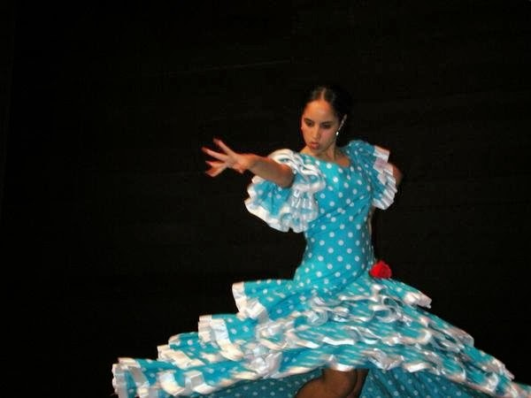 Professional Flamenco Dance Dress For Sale Proceeds Donated To The