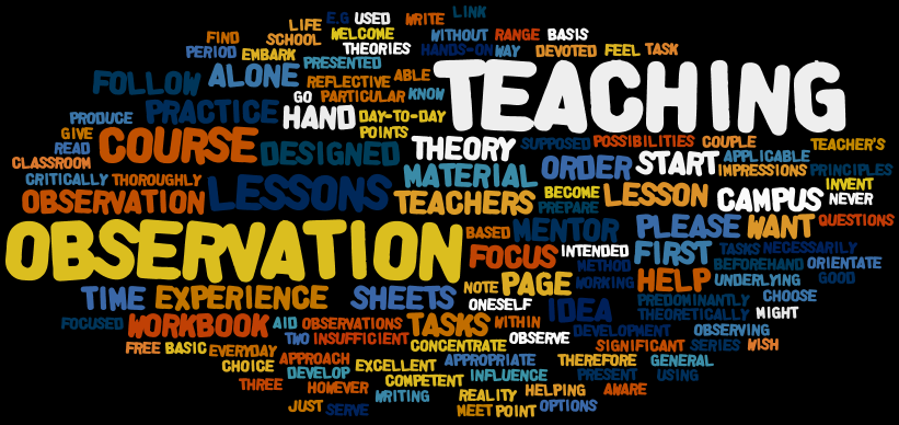 English Studies Online: Teaching Practice Observation Guidelines ...
