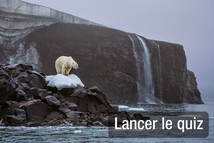 http://quiz.nationalgeographic.fr/nature-46/quiz-que-savez-vous-de-l-arctique-168