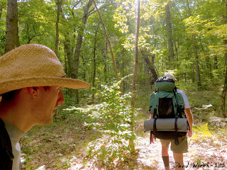sun hiking trail, manistee national forest trail, hiking, camping,