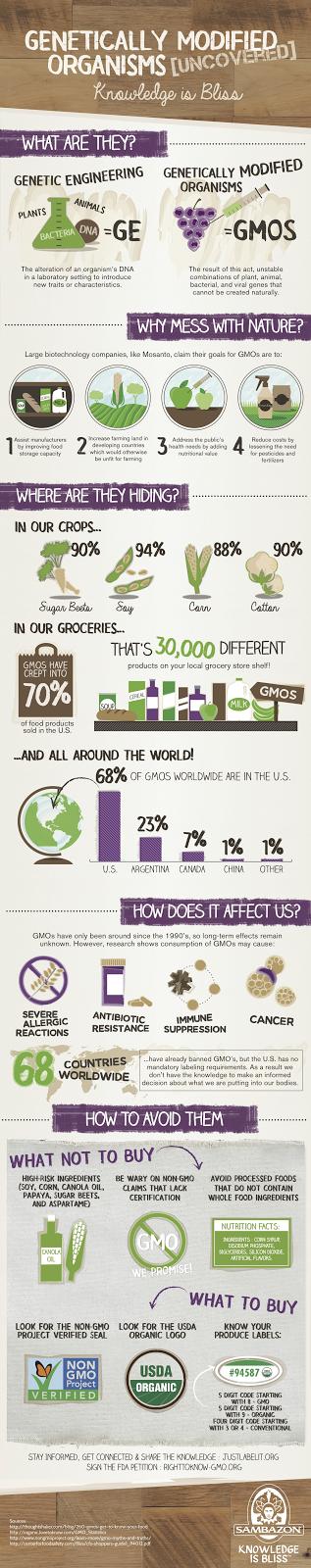 Sambazon's GMO infographic
