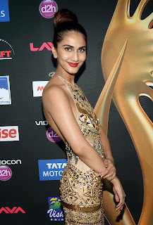 Vaani Kapoor looks stunning in skin colored Gown at IIFA Awards 2014 1