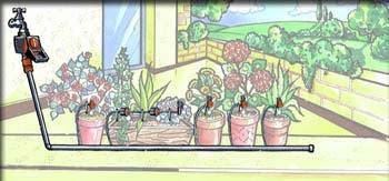 Fiori piante e giardini del mondo impianto d 39 irrigazione for Impianto irrigazione automatico