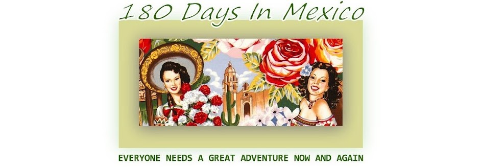 180 Days In Mexico