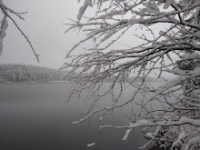 Tervetuloa!  Welcome!