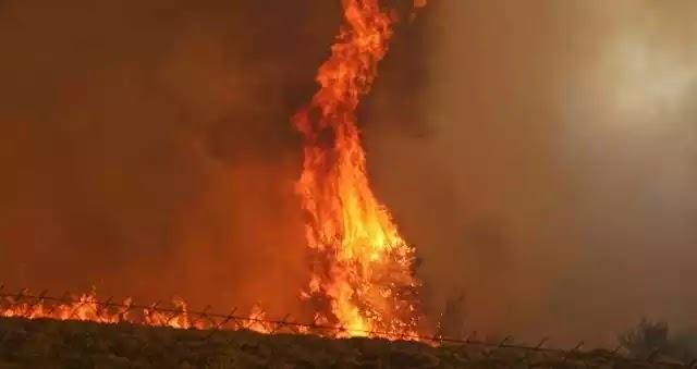 Ανεξέλεγκτη η κατάσταση στο Σαλαμίδι - Εκκενώνονται σπίτια