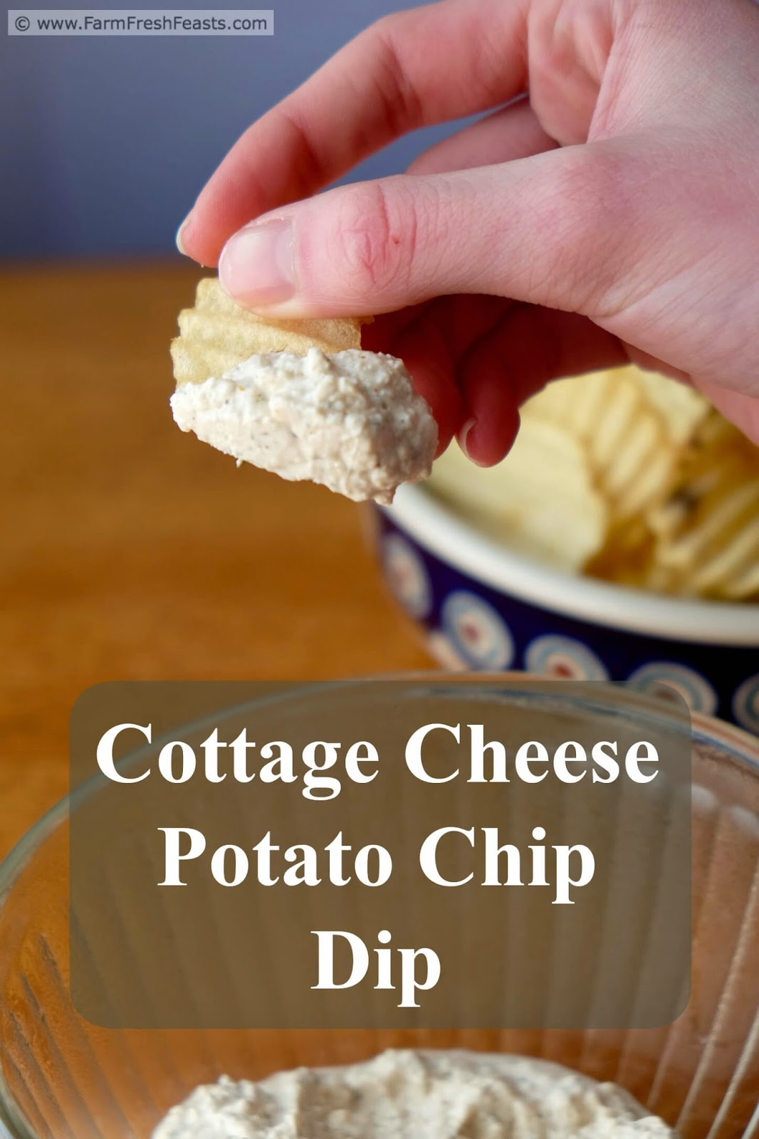 farm fresh feasts spiced cottage cheese chip dip