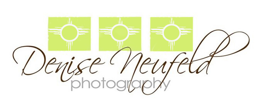 Chico Ca Wedding  Photographers