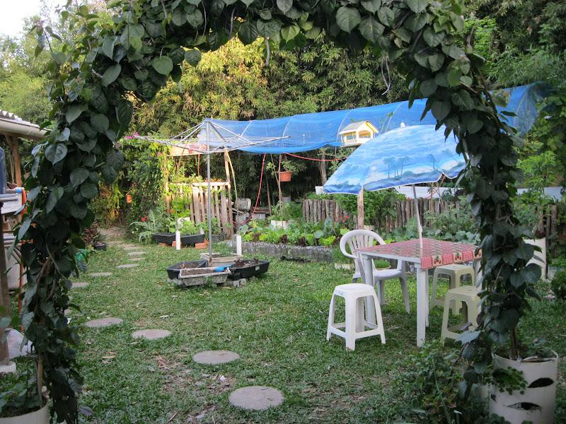 jardim de horta e pomar : jardim de horta e pomar:Plantando o Verde e o Verbo: Horta, pomar e paisagismo natural : Nosso