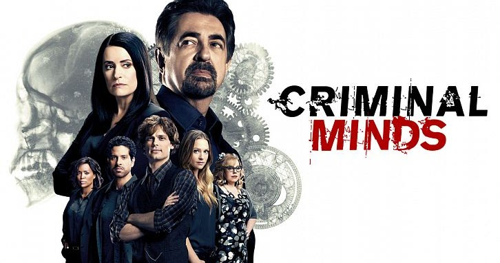 Mentes criminales 13x15 Espa&ntildeol Disponible