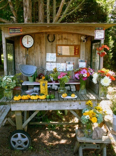 Vegetable Stand Designs : Windmill farm roadside fruit stands you would love to