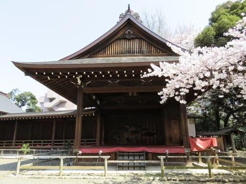 靖国神社の桜03