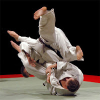 flying armbar submission