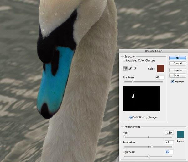 swan with a blue beak