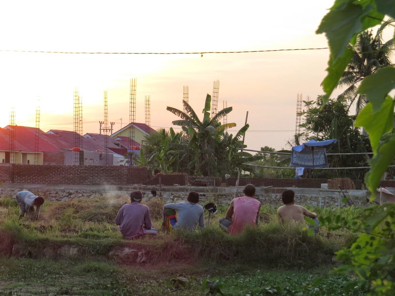Menikmati Senja Bersama Pak Tani (Foto Admin)