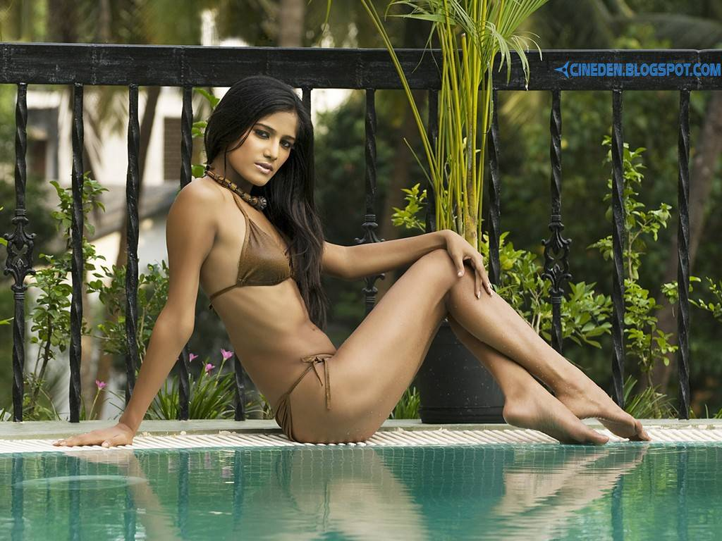Poonam Pandey's letter to BCCI - Read and enjoy