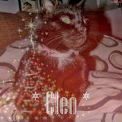 Damens dejlighed, Cleo.