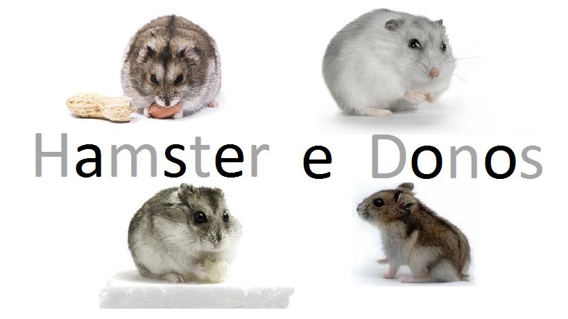 Hamster e Donos