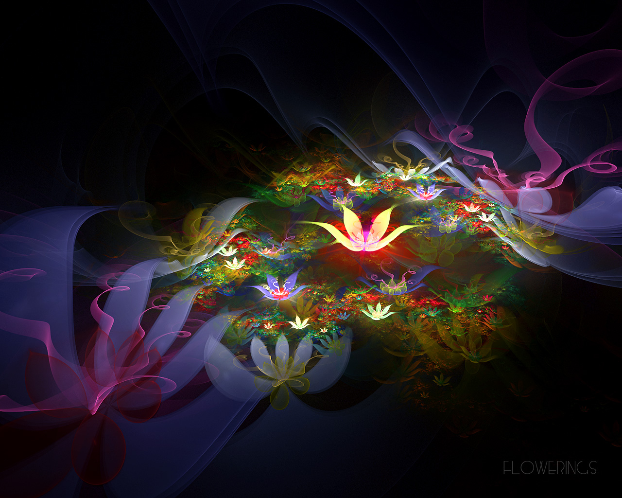 3d Flowers HD Wallpaper Download | Hd Wallpapers 2u Free Download