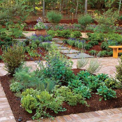 How To Grow Herbs From Seed The Garden Of Eaden
