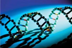 Enfermedades  genética 2014