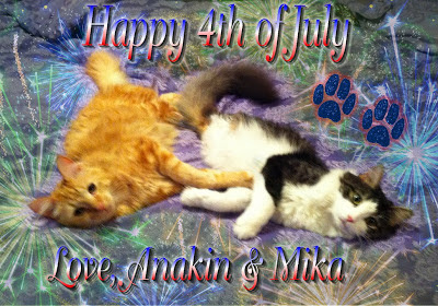 Happy 4th of July Love Anakin & Mika