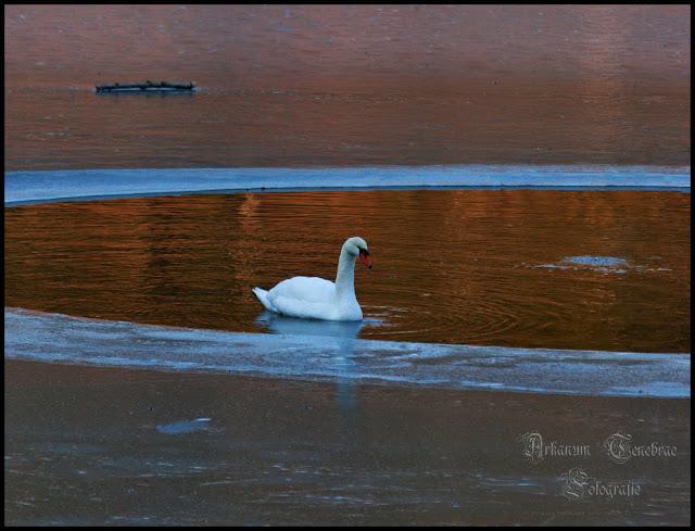 Landschaftsfotografie im Winter