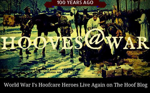 Hooves@War on the Hoof Blog
