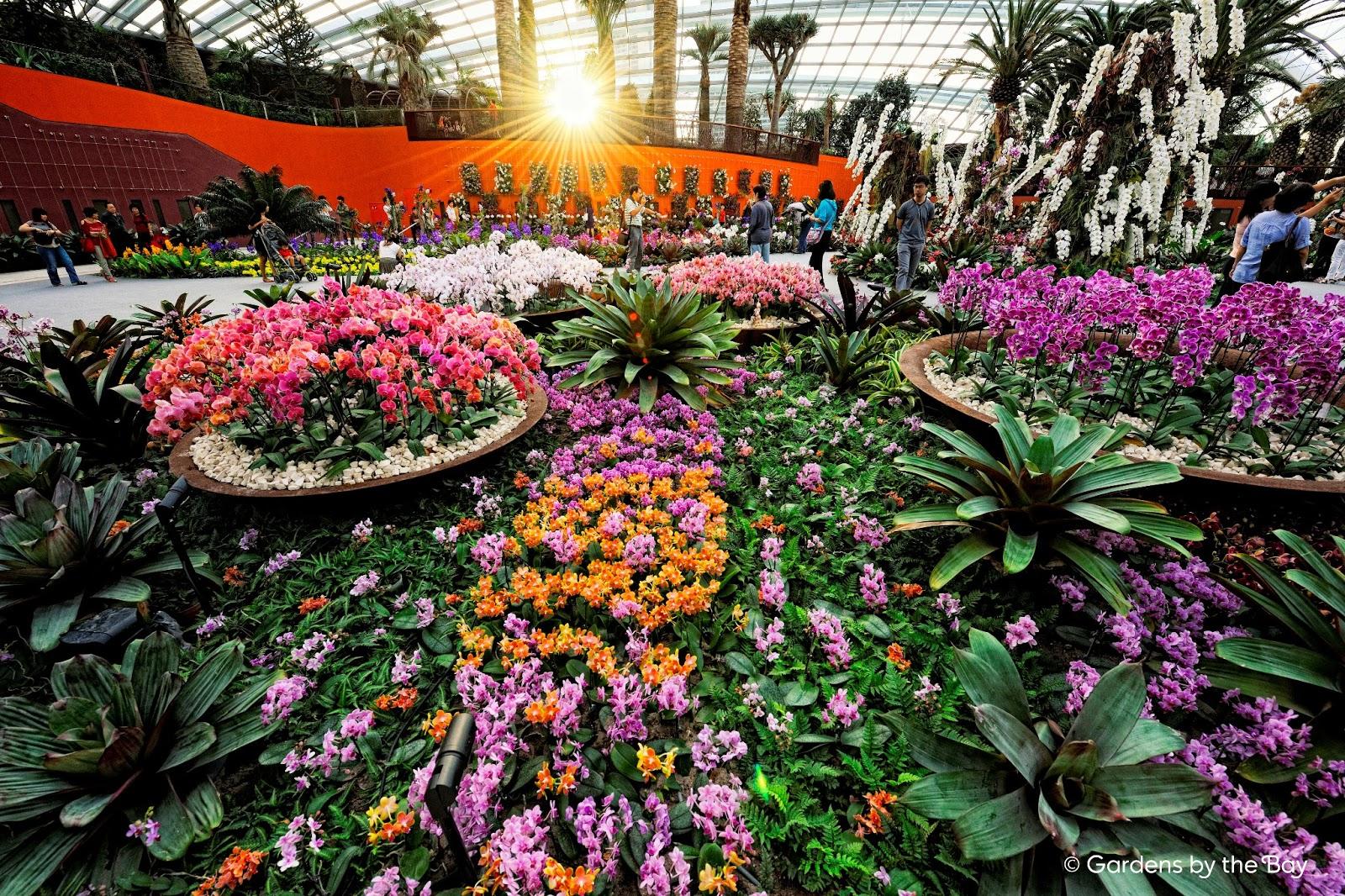 La buena vida singapore in photos gardens by the bay - Garden by the bay flower show ...