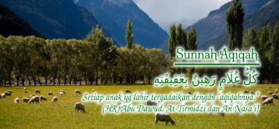 Layanan Aqiqah Palembang