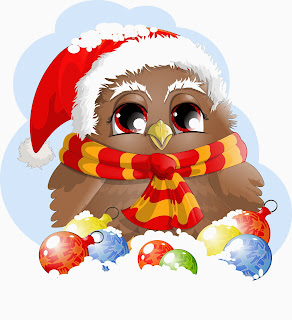 funny santa bird