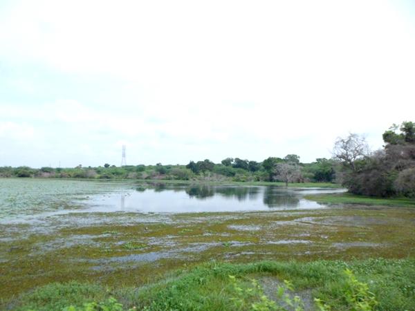 Hambantota Katuwewa Lake water overfall